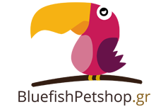 blue fish pet shop